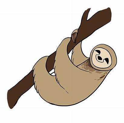 Sloth Drawing Draw Easy Cartoon Drawings Easydrawingguides
