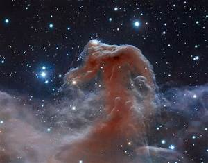 Horsehead Nebula Hubble - Pics about space
