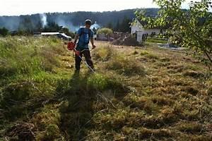 Oplocení pozemku souhlas sousedů