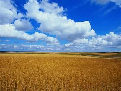 Bliss Windows Vista Wallpapers Desktop Backgrounds Field