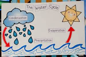 Water Cycle Bulletin Board Ideas