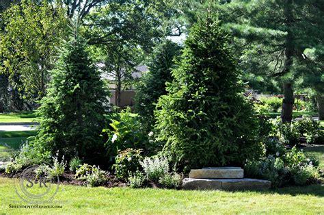 corner lawn landscaping serendipity refined blog how to landscape a corner lot