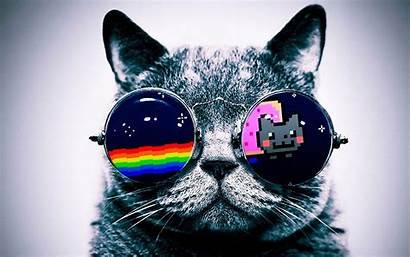 Nyan Cat Wallpapers Neon Cats Cool Nya