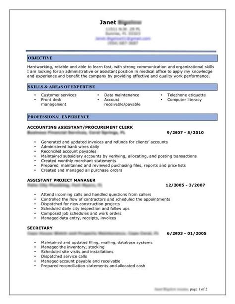 How To Make Professional Cv Format by Resume Exles Resume Professional Resume Help
