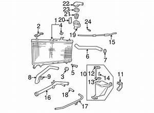 Phenomenal 324 Oldsmobile Engine Diagram Engine Diagram Viddyup Com Wiring 101 Akebretraxxcnl