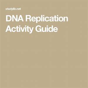 Dna Replication Activity Guide