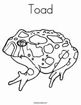 Toad Coloring Pages Printable Tadpole Drawing Horned Outline Brown Template Twistynoodle Templates Favorites Login Getdrawings Built California Usa Noodle Cursive sketch template