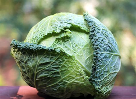cabbage juice smell funky juicer wonders benefits win health machine