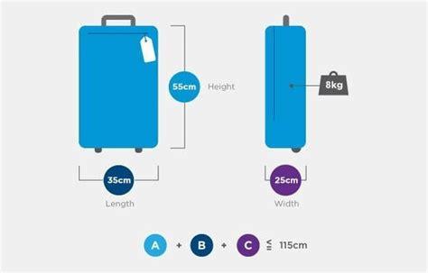baggage allowance air india  switzerland