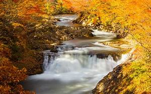 River, Autumn, Nature, Wallpapers, Hd, Desktop, And, Mobile