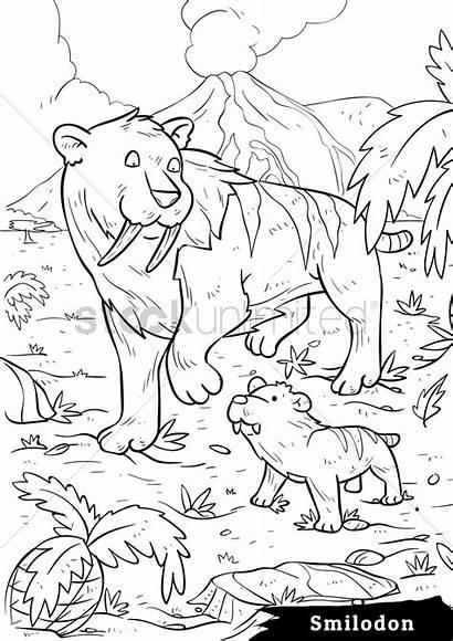 Smilodon Cubs Vector Stockunlimited Illustration
