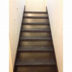 Rénovation Escalier Par Recouvrement : recouvrement escalier bois les derni res ~ Dailycaller-alerts.com Idées de Décoration