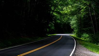 Asphalt Road Forest Trees Turn Background Widescreen