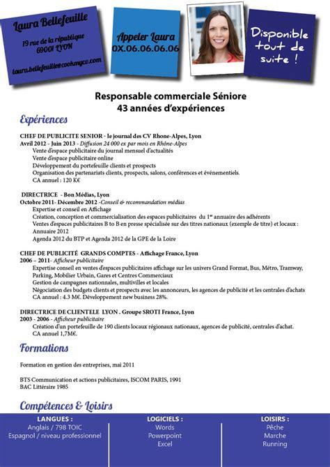 Type De Cv Professionnel by Cv Type Reconversion Professionnelle