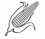 Corn Coloring Popcorn Kernel Sweet Ear Pages Template Drawing Sheet Printable Splatoon Sketch Cob Getcolorings Templates Getdrawings sketch template
