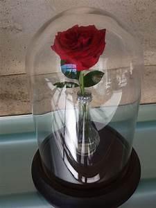 Rose Eternelle Sous Cloche : d coration mariage princesse disney roquefeuille ~ Farleysfitness.com Idées de Décoration