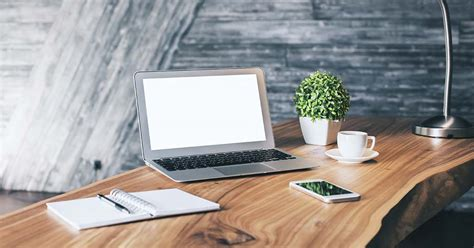 Best Desk Plant by 10 Best Plants For Your Office Desk In South Africa The