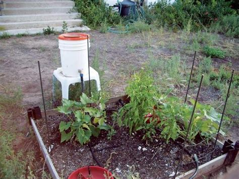 country lore low cost grey water irrigation diy