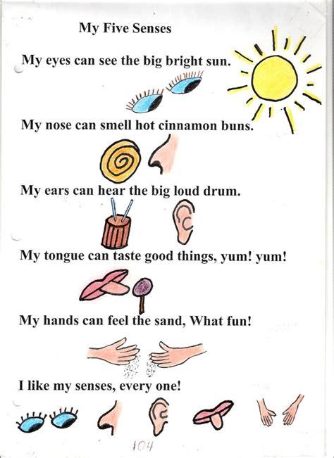 best 25 five senses preschool ideas on senses 5 | 30fa3263bccc95efa2479f369db687bc five senses preschool my five senses