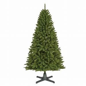 Color Switch Plus Vancouver Fir Tree Family