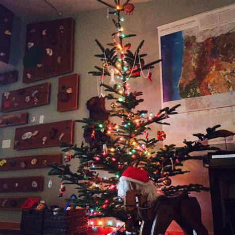 griswold family christmas trees temp closed 10 photos