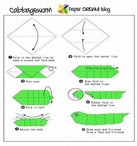 Bug Origami  Cabbage Worm