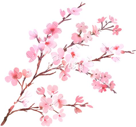 Open full size Watercolor With Spring Tree Branch In