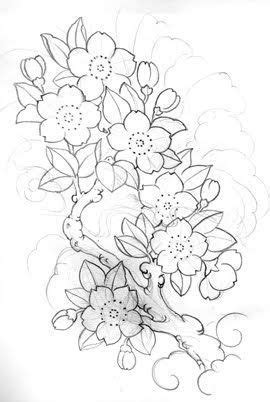 Authntik Tattoo Design | Cherry blossom drawing, Flower