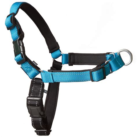 easy walk harness petsafe deluxe easy walk harness in ocean petco