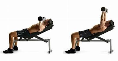 Incline Bench Dumbbell Press Chest Exercises Dumbbells