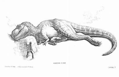 Rex Jurassic Park Dinosaur Drawing Sketch Sleeping