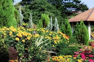 Garten Im September : garten im september aufgaben die sie erledigen sollten ~ Watch28wear.com Haus und Dekorationen