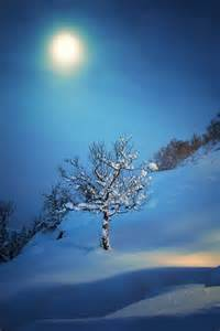 Winter Night Moon