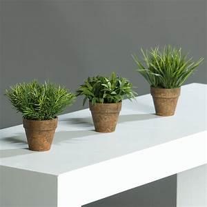 Grünpflanzen Im Topf : mini gr npflanzen kunstgras deko gras im topf 3 st ck ebay ~ Michelbontemps.com Haus und Dekorationen