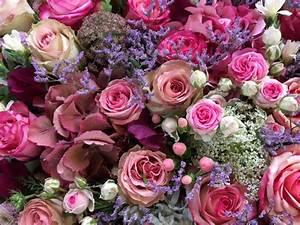Blumen Der Liebe : blumen rampp valentinstag 2017 ~ Orissabook.com Haus und Dekorationen