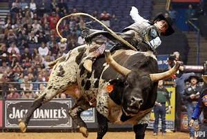 Professional Bull Riding In St Louis