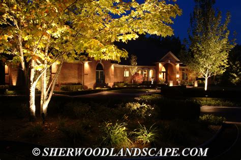 residential outdoor landscape lighting michigan outdoor