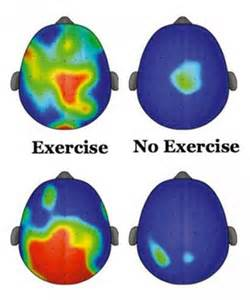 Brain Activity and Exercise