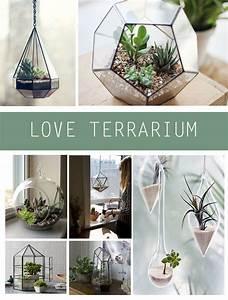 Terrarium Plante Deco : cr er un joli terrarium d co terrarium jardins et ~ Dode.kayakingforconservation.com Idées de Décoration