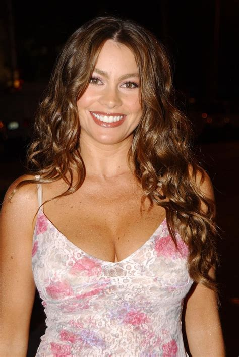 curly brunette hair   dazzling smile  sofias