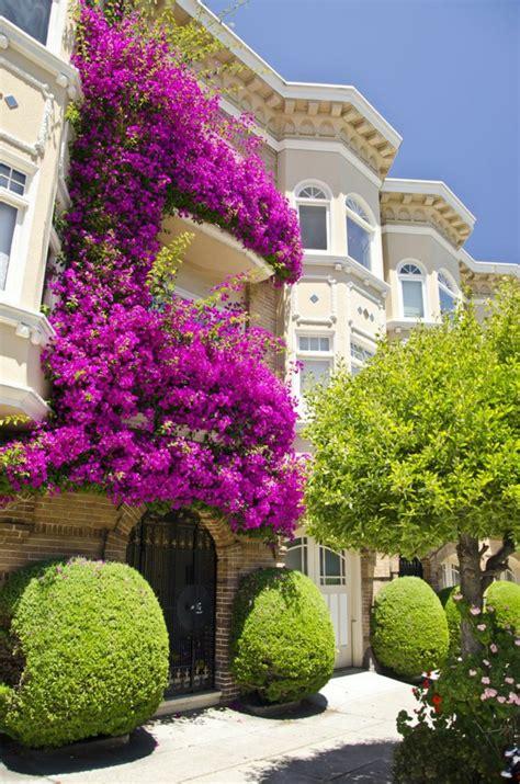 Blumenkästen Für Den Balkon by Blumenkasten F 252 R Balkon Wundersch 246 Ne Bilder Archzine Net