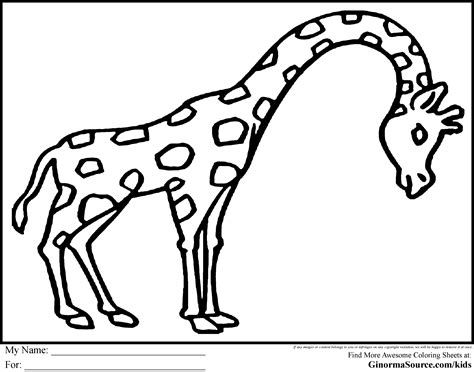 animals to color easy animal coloring pages for coloring home