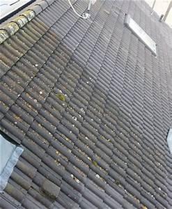 Moos Entfernen Dach : referenzen der betonpflaster reinigung beton pflaster reinigen garten landschaftsbau ~ Orissabook.com Haus und Dekorationen