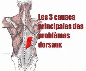 Douleur Bas Du Dos Les 4 Causes Possibles Et Comment