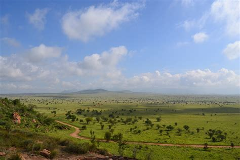 File:Savanna towards the north-east from Lion Rock in the ...