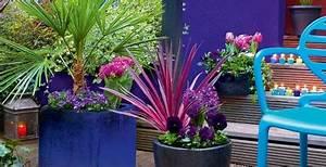 Plantes D Extérieur Pour Terrasse : composition d 39 une jardini re orientale toutes saisons ~ Dailycaller-alerts.com Idées de Décoration