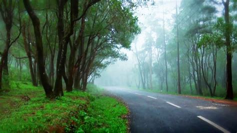 ponmudi hill station  kerala welcomenri