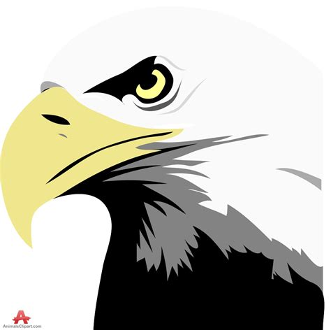 Bald Eagle Clip Bald Eagle Clipart Eagle Pencil And In Color Bald