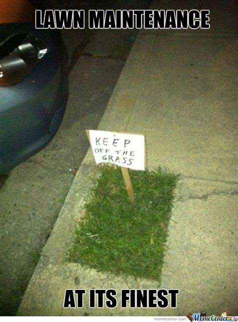 Turf Meme - nice lawn by spenny meme center