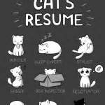 cat emotions bark time